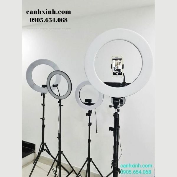 Den-livestream35cm